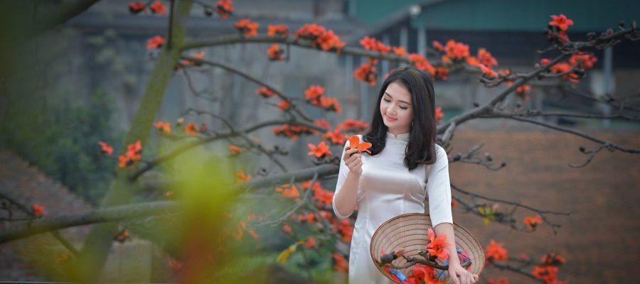 áo dài hoa gạo